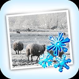 JixiPix Snow Daze 1.26
