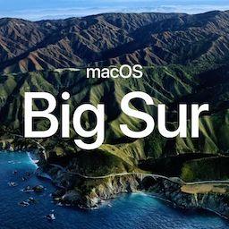 macOS Big Sur beta (20A4299v)